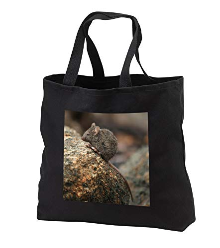 Giant Covered City Bag - 6