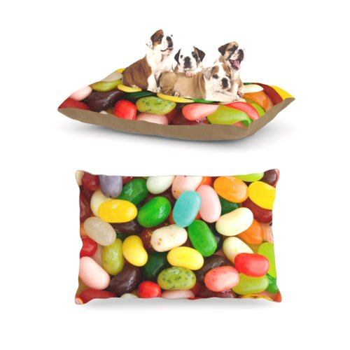 kess-inhouse-libertad-leal-i-want-jelly-beans-dog-bed