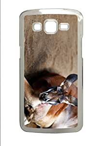 protective cases Kangaroo PC Transparent case/cover for Samsung Galaxy Grand 2/7106