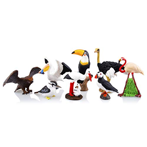 - TOYMANY 8PCS Realistic Bird Animals Figurines, 2-4