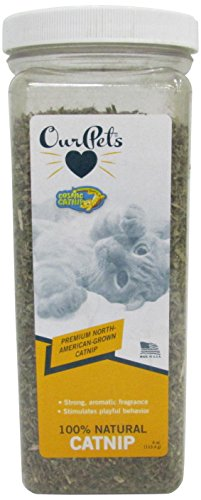 OurPets Premium North-American Grown Catnip, 4-Ounce Jar