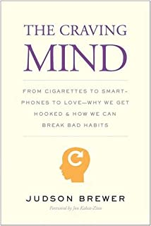 Book Cover: The Craving Mind: From Cigarettes to Smartphones to Love – Why We Get Hooked and How We Can Break Bad Habits