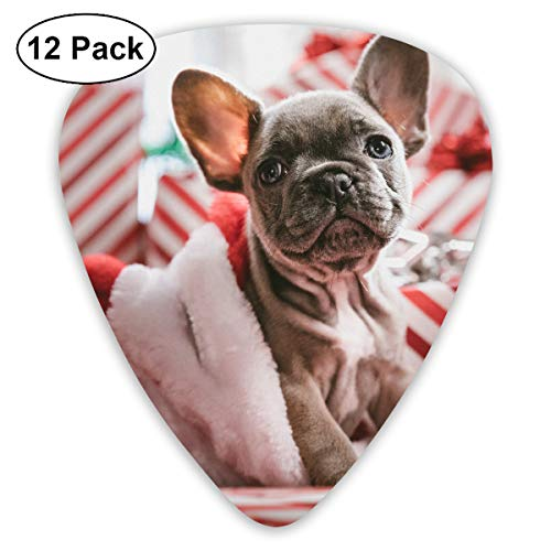Cute Christmas Brindle French Bulldog Puppy in Santa Hat Bendy Ultra Thin 0.46 Med 0.73 Thick 0.96mm 4 Pieces Each Base Prime Plastic Jazz Mandolin Bass Ukelele Guitar Pick Plectrum Display ()