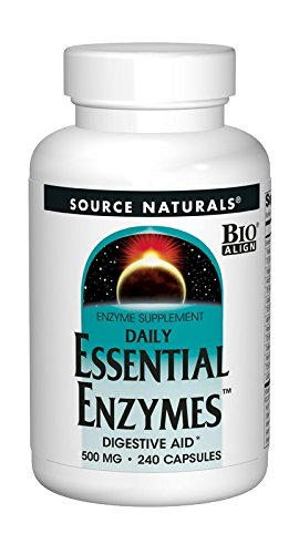 Source Naturals Essential Enzymes 500mg Bio-Aligned Daily Digestive Aid - 240 Capsules