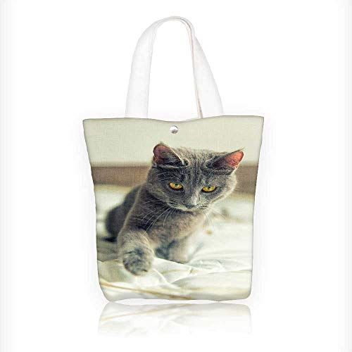 Ladies canvas tote bag Gray cat with yellow eyes plays on bed reusable shopping bag zipper handbag Print Design W11xH11xD3 INCH