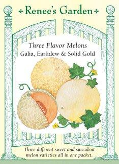 Melons - Three Flavor Seeds - Disease Resistant
