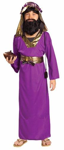 Forum Novelties Biblical Times Purple Wiseman Child Costume, Large