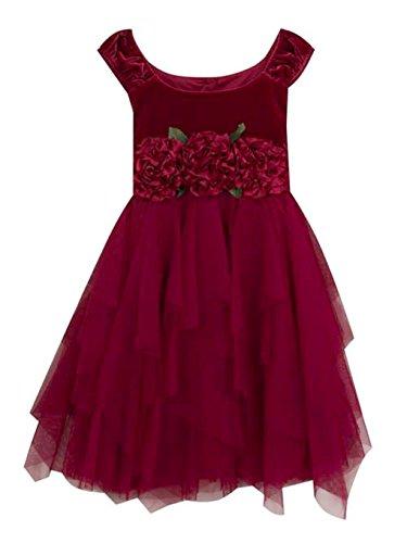 Rare Editions Girls Wine Burgundy Velvet Formal Dress (6X)