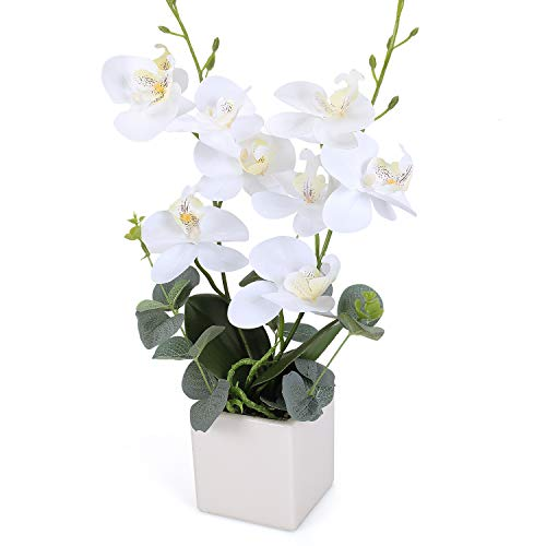 RERXN Artificial Orchid Bonsai Fake Orchid Arrangement 3 Heads PU Potted Phalaenopsis Plant for Home Party Decor (White) -