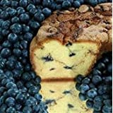 My Grandma BBLGC Large- 10 in.- 3.1 lbs New England Blueberry Coffee Cake