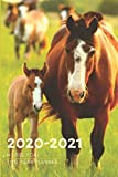 2 Year Planner 2020-2021 Horse Foal Two Years Monthly Schedule Organizer With Holidays: Pocket Mini Academic 24 Months Calendar; Slim Agenda Planner; ... Diary Notebook With Inspirational Quotes