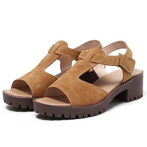 TAOFFEN Femmes Classique Bloc Sandalias Talons Moyen T-strap Peep Toe Zapatos De Boucle Marron