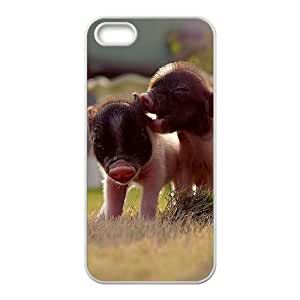 Customized case Of Little Pig Hard Case for iPhone 5,5S