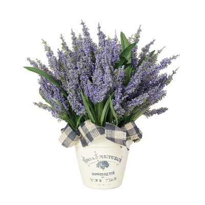 Lavender Heather Desk Top Plant French Clay - Lavender Topiary