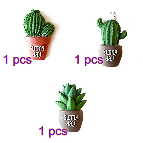 Succulent Creative Refridgerator Decoration Christmas