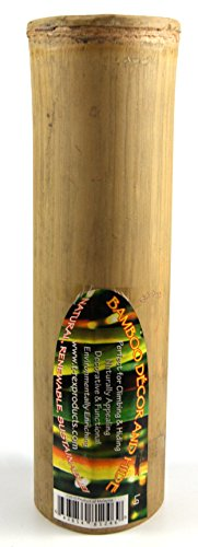 T-Rex Bamboo Hollow - Large by T-Rex
