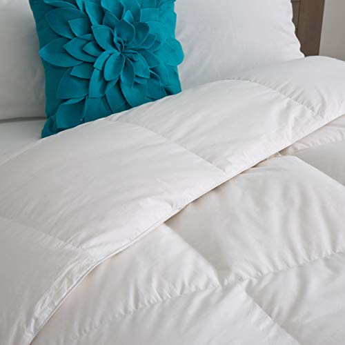 Candice Olson All Season 550 Fill Power White Down Comforter Queen