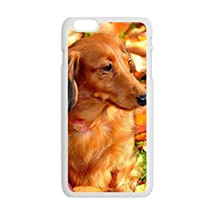 Autumn Leaves And Dog White Phone Case for Iphone6 Plus