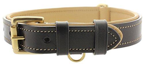 (Viosi Leather Padded Dog Collar - Made of Genuine Kingston Luxury Leather [Medium, Black])