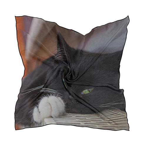 - Your Home Silk Scarf Square Satin Scarf Cat Black Lying Spotted Whiskers Lightweight Bandanas Head Wrap Neck Shawl 24x24 Inches