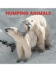 Animals Calendar 2022: Funny Gag Gift for Adults Men Women Lover Husband Wife Boyfriend Girlfriend: Great Birthday Ideas, Joke, Valentine's ... White Elephant Party, Anniversary, Christmas