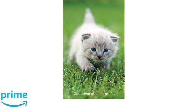 ... y contraseñas en internet - Cubierta de gatito de ojos azules (Cuadernos para los amantes de los gatos) (Spanish Edition): Cuadernos Prácticos y Útiles: ...