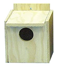 North American Pet Bird Nest Box Finch with Lip