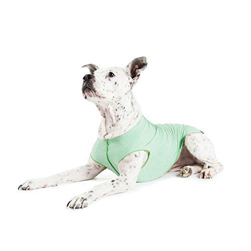 (Gold Paw Sun Shield Dog Tee - Pistachio Heather - Size 10)