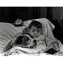 The Little Rascals Spanky and Petey Pete The Pup Our Gang Hollywood Photos 8x10