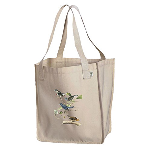 Market Tote Organic Canvas Indigo Bunting James Audubon Birds By Style In ()