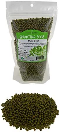 Mung Bean Sprouting Seed: 1 Lb - Organic, Non-GMO - Handy Pantry Brand - Dried Mung Beans for Sprouts, Garden Planting, Chinese & Asian Cooking, Soup & More