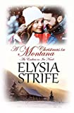 A Christmas in Montana (Embers on Ice Book 1)