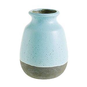 41RgKP8M2cL._SS300_ Beach Vases & Coastal Vases