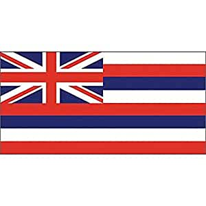 """Hawaii bandera en un palo 12""""X 18"""""""
