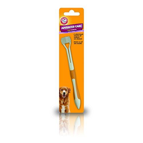 Arm & Hammer Zahnbürste für Hunde, dreiseitig