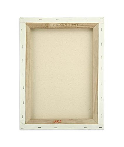 Paramount 3/4 Inch Prestretched Double Primed Artist Canvas 100% Cotton Bulk Value Pack [Qty 10] - 24''x30''