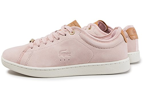 Rose 8 317 Marron Carnaby Rose Evo Lacoste wH4fY4