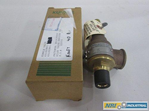 NEW KUNKLE 6010DCM01KM STEAM SAFETY BRONZE 40PSI 1/2IN RELIEF VALVE (Kunkle Relief Valve)