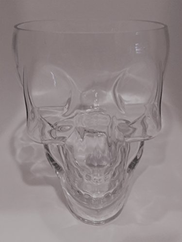 (Circleware Clear Glass Skull Shaped Ice Bucket)