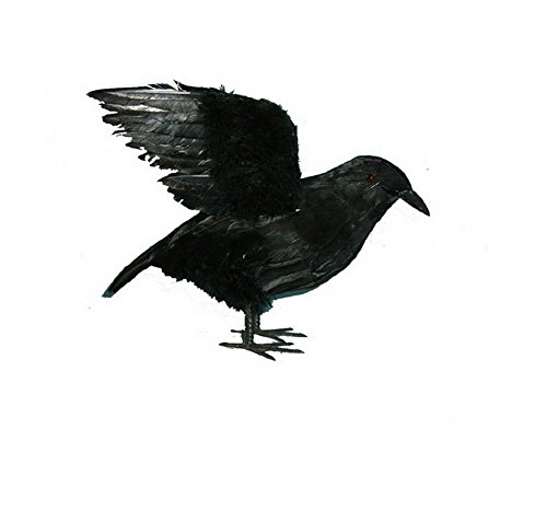 EBTOYS Halloween Crows Ravens Realistic Feathered Crows Halloween Prop Decor