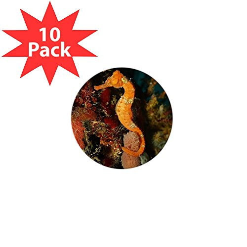 Mini Button (10 Pack) Seahorse Holding Coral