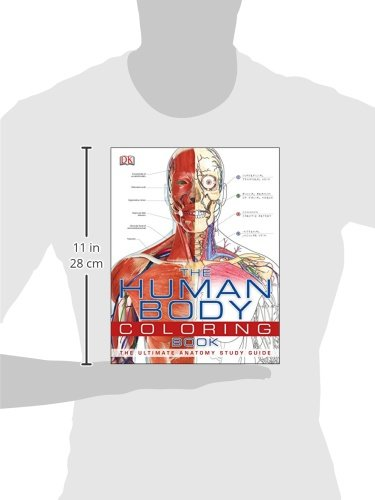 Amazon com: The Human Body Coloring Book: The Ultimate
