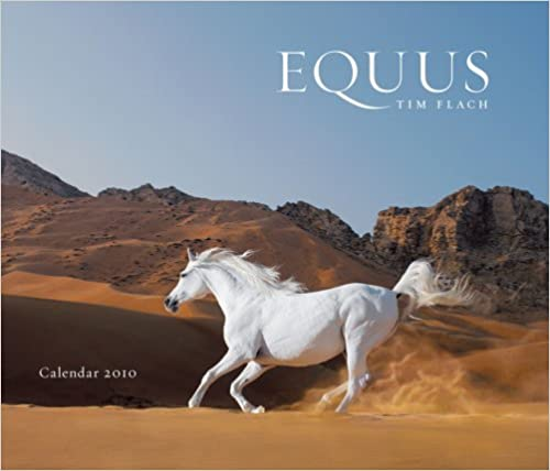 Book Equus 2010 Wall Calendar 2010