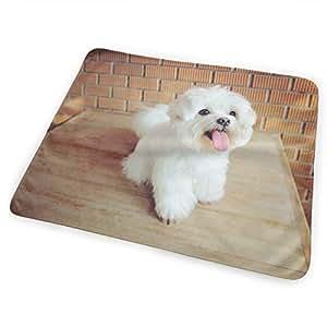 Amazon.com : FnH88Ee Maltese Dog One Baby Crib Pee Mat