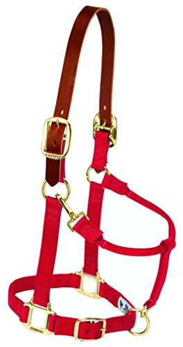 Weaver Leather Nylon Adjustable Breakaway Horse Halter, Small, Red