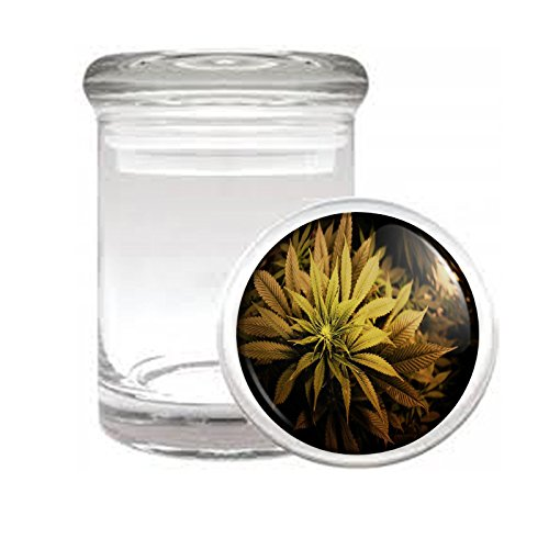 Medical Glass Stash Jar Vintage Marijuana Art S3 Air Tight Lid 3'' x 2'' Small Storage Herbs & Spices 420 Weed