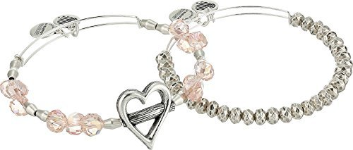 Alex and Ani Women's Heartfelt Set Rafaelian Silver One Size
