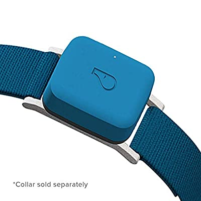 Whistle 100-04102-00 GO/Health and Location Tracker for Pets/Blue