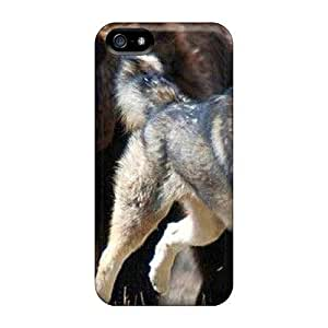 New Style GoldenArea Hard Case Cover For Iphone 5/5s- Bear Chasing Wolf Kimberly Kurzendoerfer