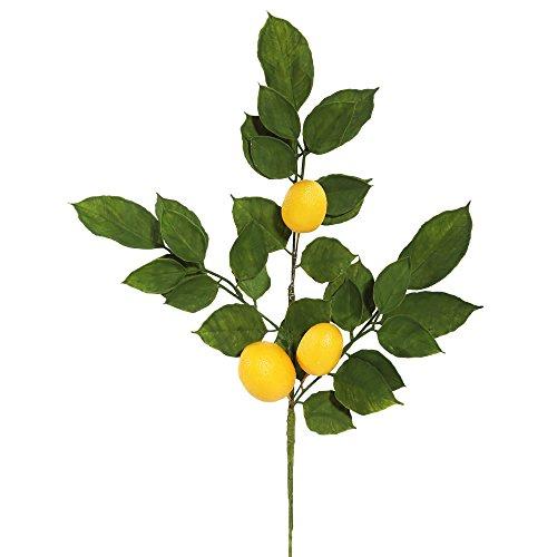 Vickerman FK170701 Everyday Lemon Spray